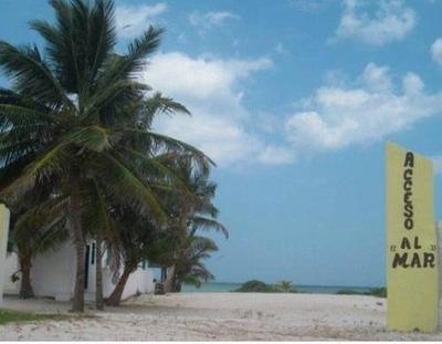 San Benito Lote Frente Al Mar ¡¡ 10x40 Km 23.5