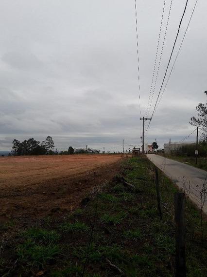 Chácara Em Reneville, Mairinque/sp De 1000m² 2 Quartos À Venda Por R$ 80.000,00 - Ch486238