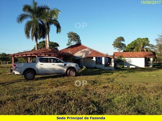 Fazenda A Venda Em Tocantins - 1077l