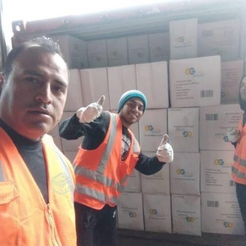Servicio De Peonetas Para Carga O Descargas De Container