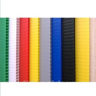 Carton Plastico Cartonplast Y/o Polipropileno