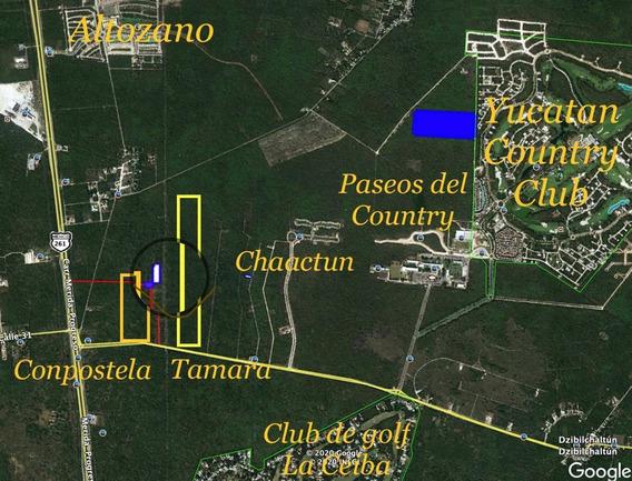 Terreno En Venta En Mérida Muy Cerca Ycc, Carretera A Progreso Y Grandes Desarrollos