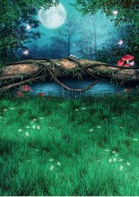 Fundo Fotográfico Tecido 3d Floresta Mágica 1,70m X 2,50m