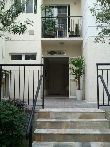 Apartamento Em Vila Mendes, São Paulo/sp De 50m² 2 Quartos À Venda Por R$ 275.000,00 - Ap217068