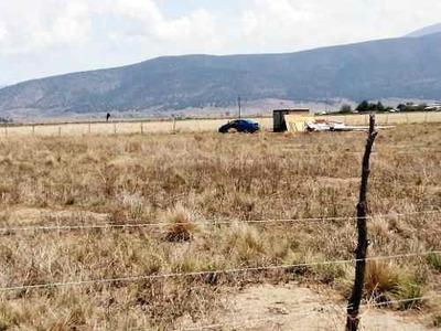 Se Venden 800 Metros Cuadrados De Terreno Rústico En La Sierra De Arteaga Coahuila