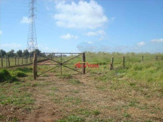 Sítio Rural À Venda, Área Rural De São Carlos, São Carlos - Si0011. - Si0011