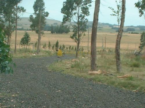 Campo Con Casa Y Tajamar, Muy Cerca Ruta 9 Y 12- Ref: 465
