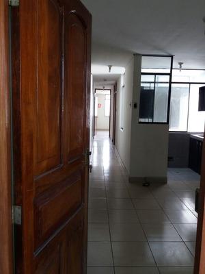 Alquiler De Oficina Los Olivos-las Palmeras-x Municipalidad