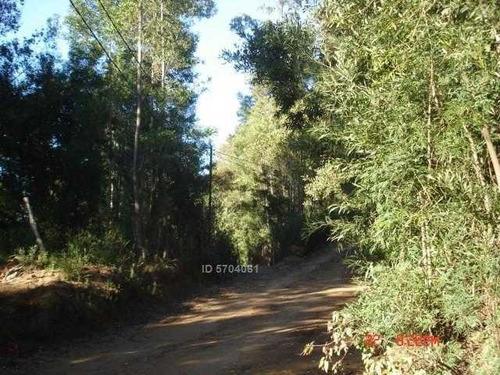 Camino Nonguen S / N , Sector Reserva De Nonguen Concepción