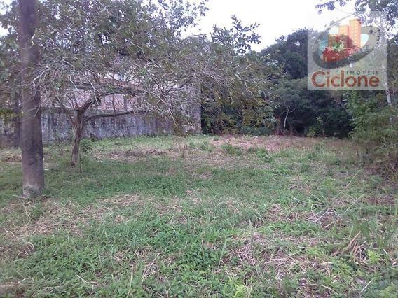 Terreno À Venda, 260 M² Por R$ 45.000 - Jardim Regina - Itanhaém/sp - Te0149