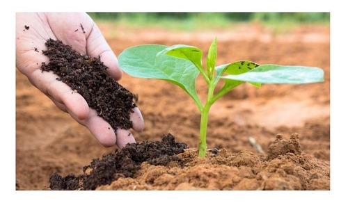 Humus De Lombriz Sustrato Abono Ecológico Natural Orgánico