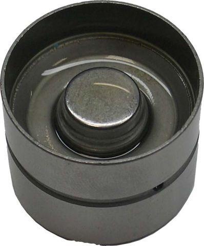 Jogo (32) Tucho Válvula Bmw X5 4.4v8 32v 00/03 M62 448s2