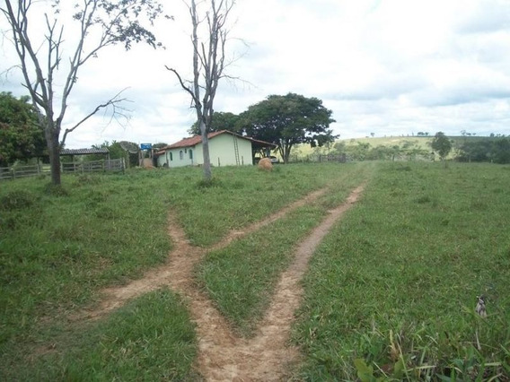 Fazenda Com 4 Quartos Para Comprar No Zona Rural Em Luz/mg - 1837
