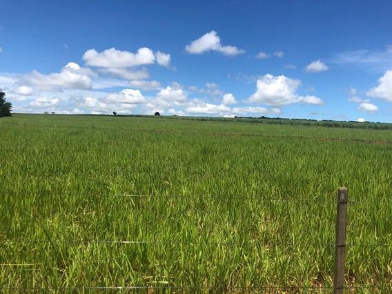 Vendo Fazenda Pecuaria Regiao De Paranavai (6077)