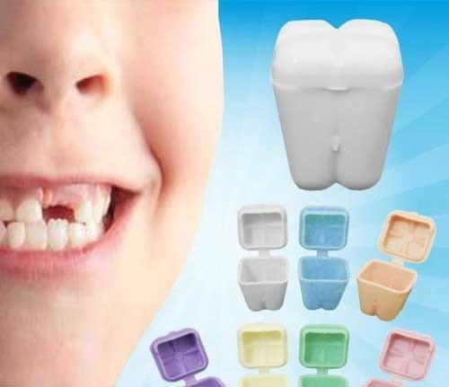 Baú Porta Dente De Leite Colorido - Com 16 Unidades