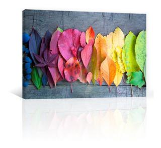 Cuadro Decorativo Naturaleza Flores Canvas Hojas De Colores