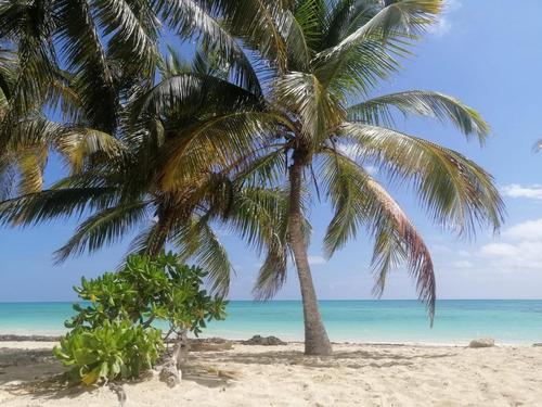 Imagen 1 de 21 de Terreno - Los Arrecifes Lotes Condominales En Venta, En Playa Del Carmen