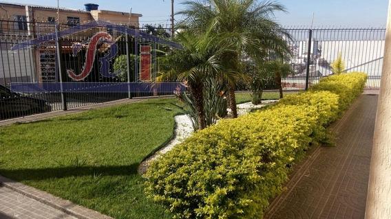 Apartamento Para Aluguel, 3 Dormitórios, Vila Bonilha - São Paulo - 8770