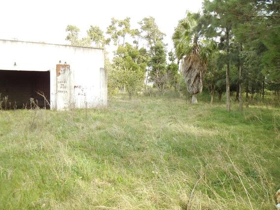 Increible Chacra Sobre Paso Del Andaluz Prox A Cno Mendoza