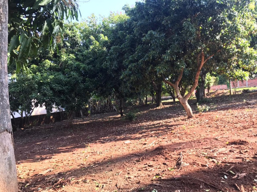 Imagem 1 de 6 de Chácara No Condomínio Barra Do Ivaí Ii