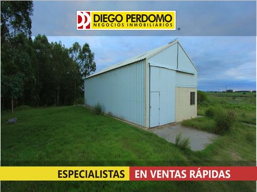 Campo Forestal De 117 Has En Venta, San José