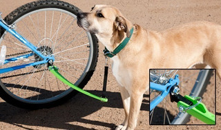 Ejercitador Perro Para Bicicleta - Woofcycle