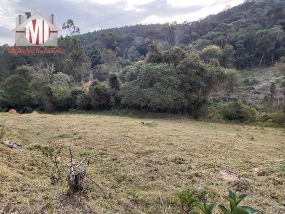 Terreno Rico Em Água, Excelente Acesso, Próximo Da Cidade, À Venda, 7000 M² Por R$ 150.000 - Pedra Bela/sp - Te0232