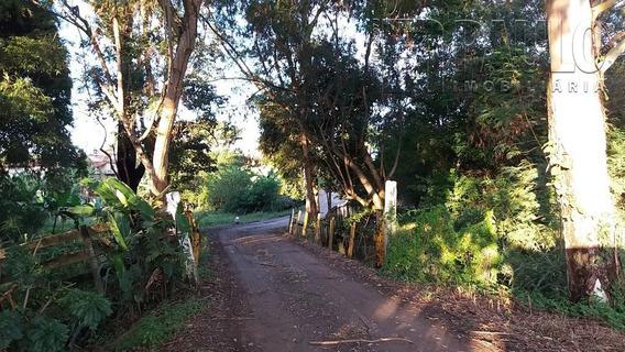 Chacara / Sitios / Fazenda - Santo Antonio - Ref: 12471 - V-12471