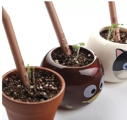 Lapiz Plantable Sprout Lapices Ecológicos