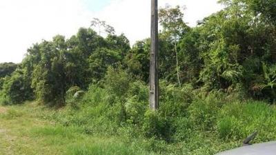 Terreno Em Itanhaém Ficando Lado Serra Com 268m² Ref 5051