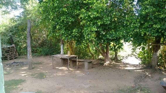 Chácara Sítio Residencial À Venda - 10903
