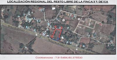 Terreno De 3997 A Orillas De La Carretera Chitre-las Tablas.