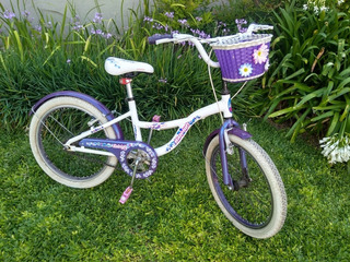 Bicicleta Raleigh Jezzy Rodado 20 Impecable