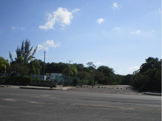 Lote Comercial Calle Langosta Playa Del Carmen C2367