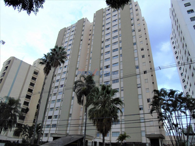 Apartamento Para Aluguel Em Jardim Proença - Ap268534