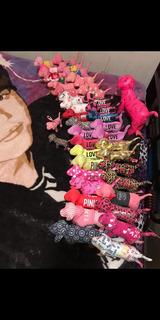Colección De 42 Perritos Pink De V.s.