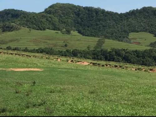 Fazenda À Venda Em Echaporã/sp - Fa00122 - 69026868