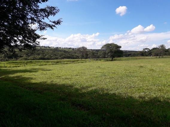 Fazenda A Venda Em Nova Alvorada Do Sul - Ms (agricultura) - 1176