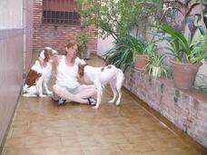 Guarderia Canina Conventillo De Perros Hostel