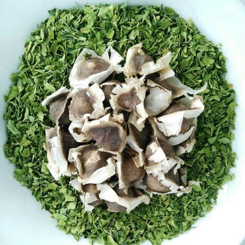 Semillas Moringa Oleifera Paquete X 50 Un