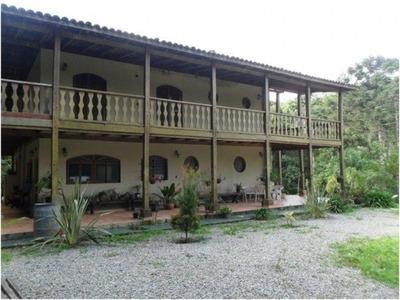 Venda Sítio São Lourenço Da Serra Brasil - Imo0275