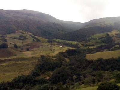 Vendo Finca Plana En Chitaga