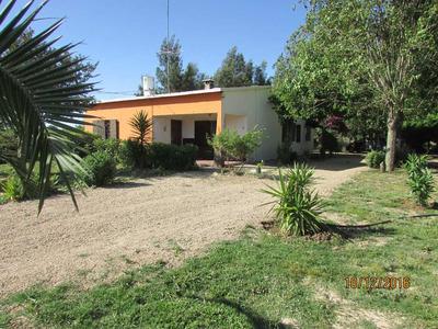 Hermosa Casa Sobre Ruta 1 (vieja) Unica Con Tanto Terreno