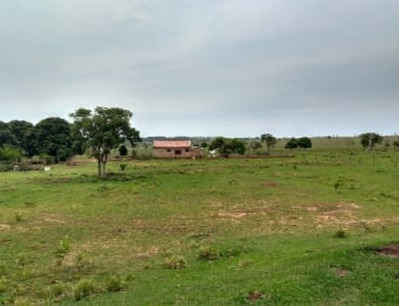 Fazenda A Venda Em Jaraguari - Ms (dupla Aptidão) - 809