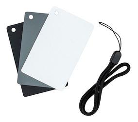Cartão Cinza E Balanço De Branco 3 Em 1