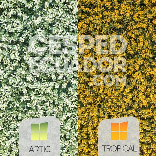Imagen 1 de 3 de Jardines Verticales Artificiales En Quito Y Guayas