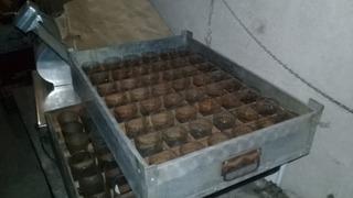 48 Vasos De Vidrio Labrados P/ Shot + Contenedor Organizador