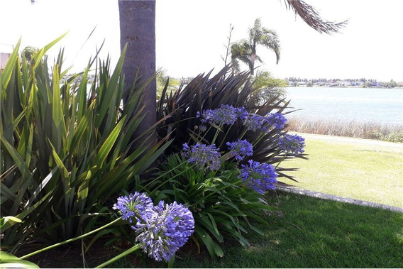 Departamento Venta,2 Amb,tigre-barrio Santa Clara,villanueva,vila Vela,terrazas Al Lago,