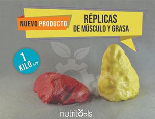 Kit/paquete Replicas Musculo Y Grasa Corporal 1kg, No Nasco