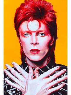 Placa - Quadro - Decorativo - David Bowie - Música - (v268)